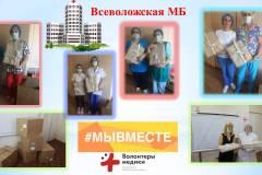 otchet_foto_vsevolozhsk